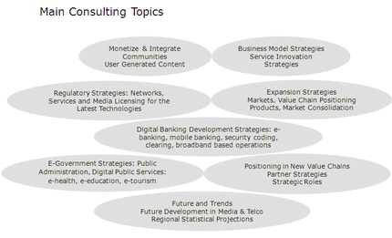 5CCG Main Consulting Topics - Click to enlarge
